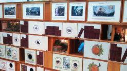 Activity wall at Scottish Storytelling Centre in Edinburgh