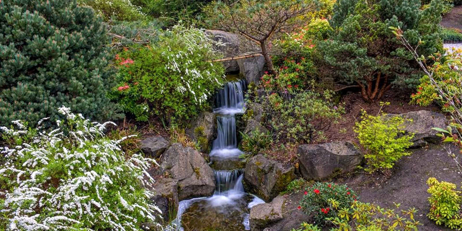 Waterfall surrounded by rocks and plants