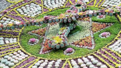 Details from centre of Edinburgh Floral Clock 2018